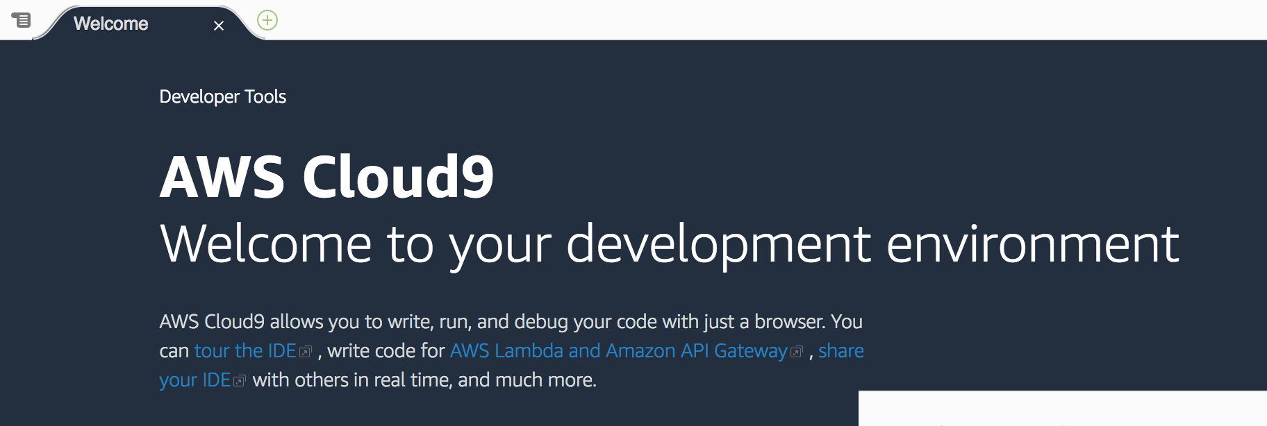 re:Invent 2018 Cloud9でAWS CLI v2 を動かそう